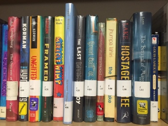 vertical appearance in Lin-Wood's School Library